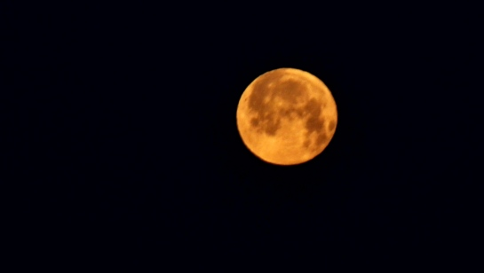 morning moon2